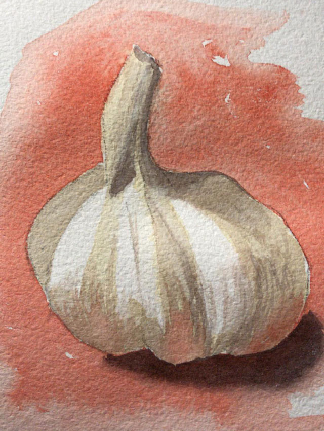 Great garlic paintings by watercolour students